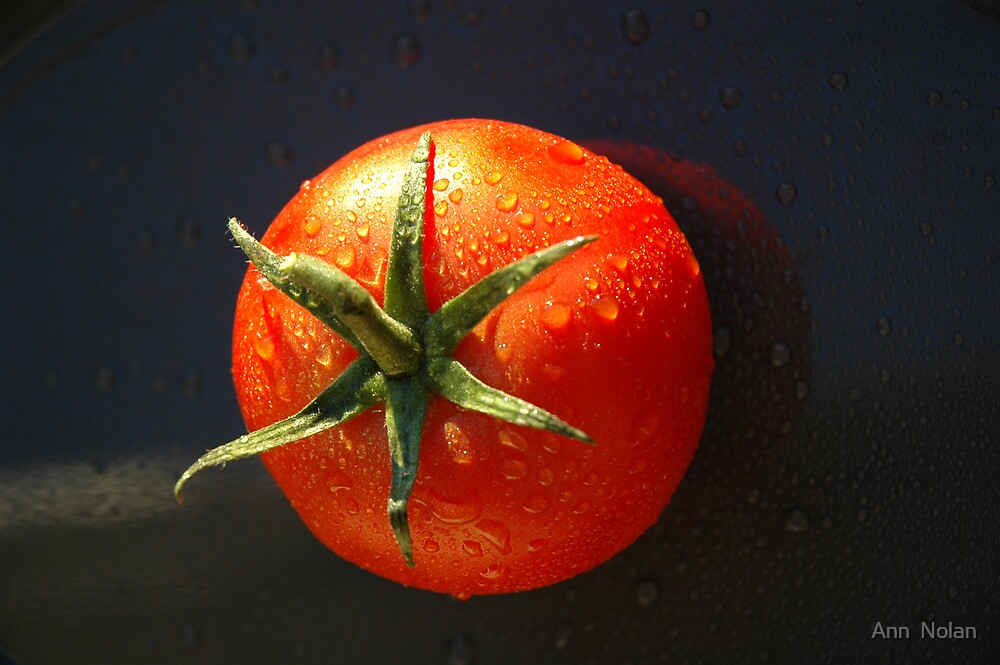 Truss Tomato by Ann  Nolan