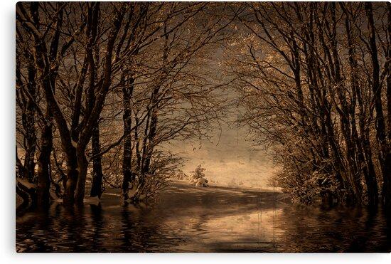 Winter memory by Philippe Sainte-Laudy