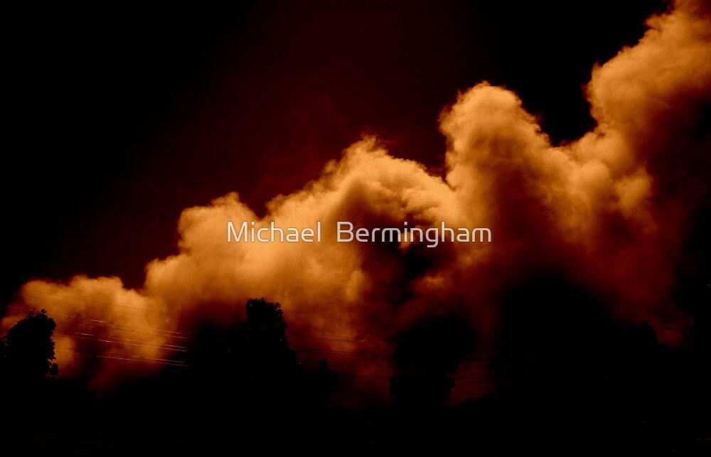 Firestorm by Michael  Bermingham
