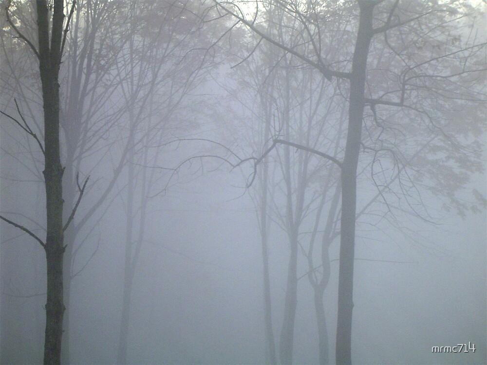 misty wood 3 by mrmc714