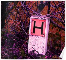 H is for.... Poster