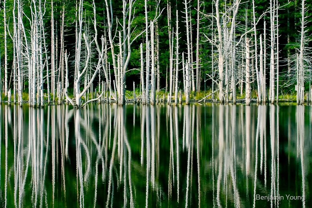 Shaggers Lake by Benjamin Young