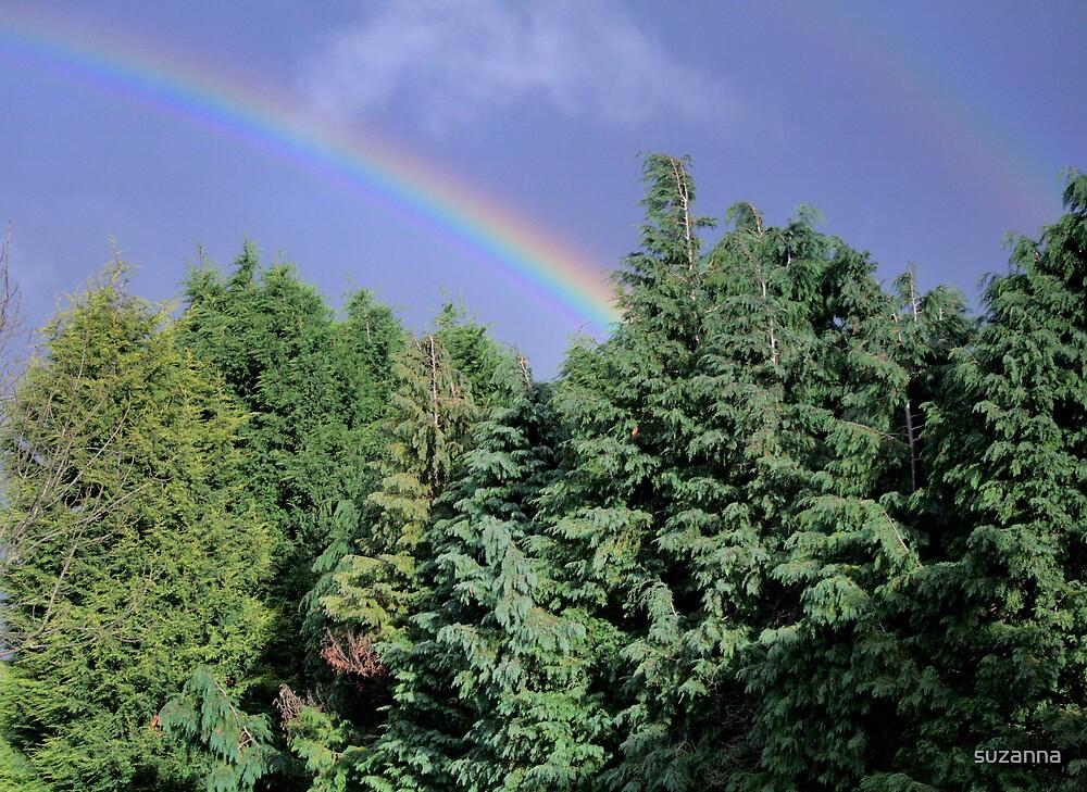 Finians Rainbow by suzanna