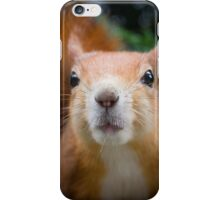 Squirrel all up in your face iPhone Case/Skin