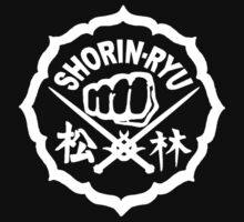 SHORIN-RYU Karate by Jen Cannella