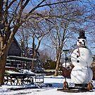 Frosty ? by Nancy Richard