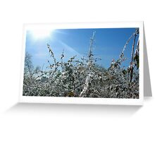 The Frozen Bush Greeting Card