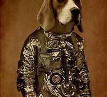 Beagle by Durro