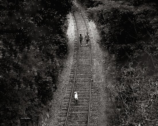 Journey by © Joe  Beasley IPA