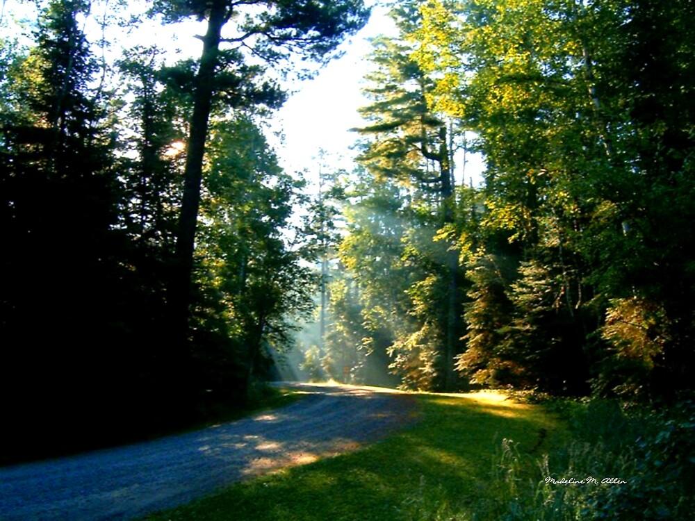 Serenity by Madeline M  Allen