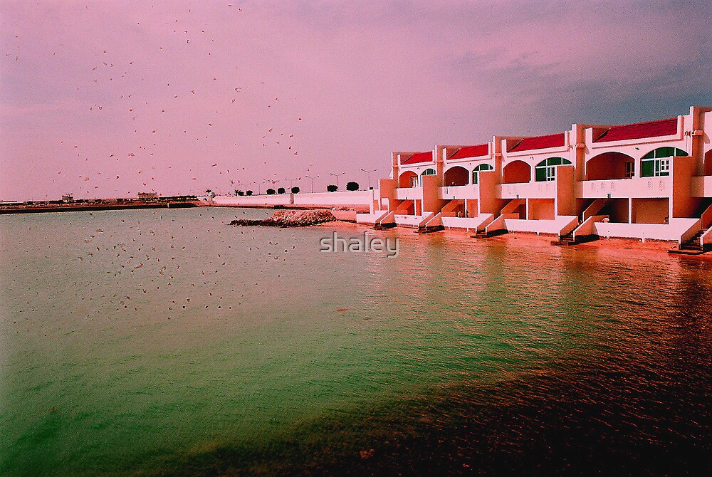 Doha Delight by shaley