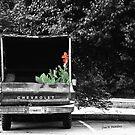Pretty Cargo by © Joe  Beasley IPA