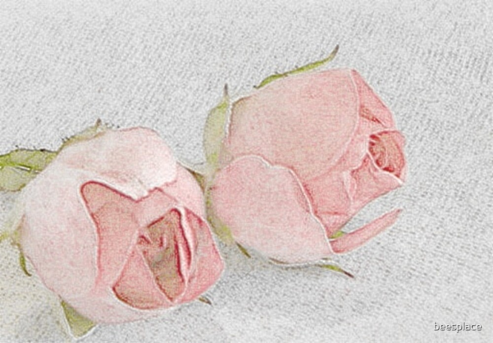 Pink Romance by beesplace