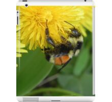 Pollen Gatherer iPad Case/Skin