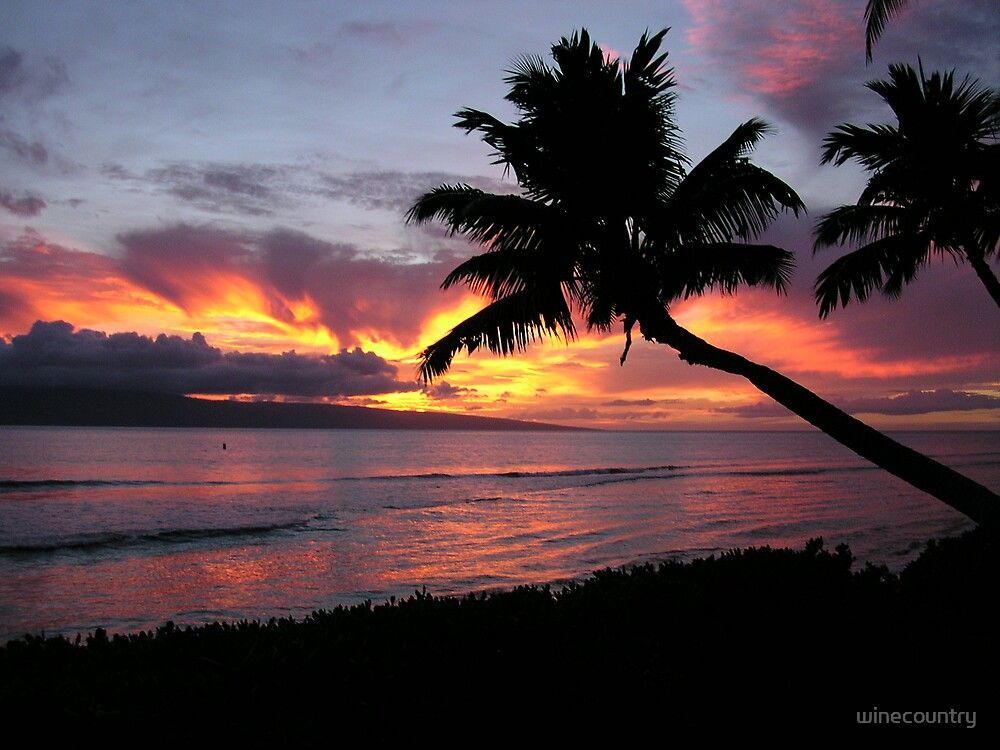 Maui Sunset by winecountry