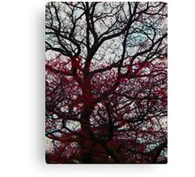 Blood Rush Canvas Print