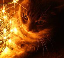 Meeka with Lights by crystalseye