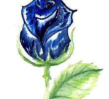 Colorful Painted Rose by AnnArtshock