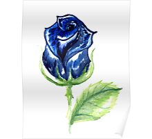 Colorful Painted Rose Poster