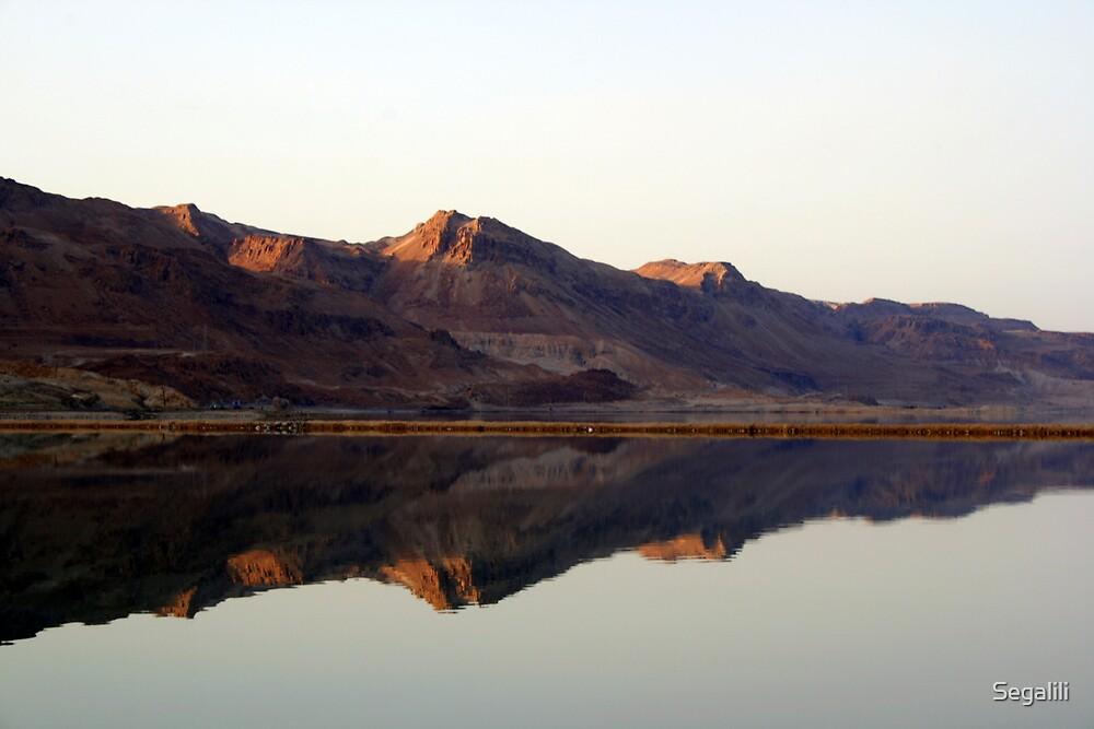 Dead Sea by Segalili