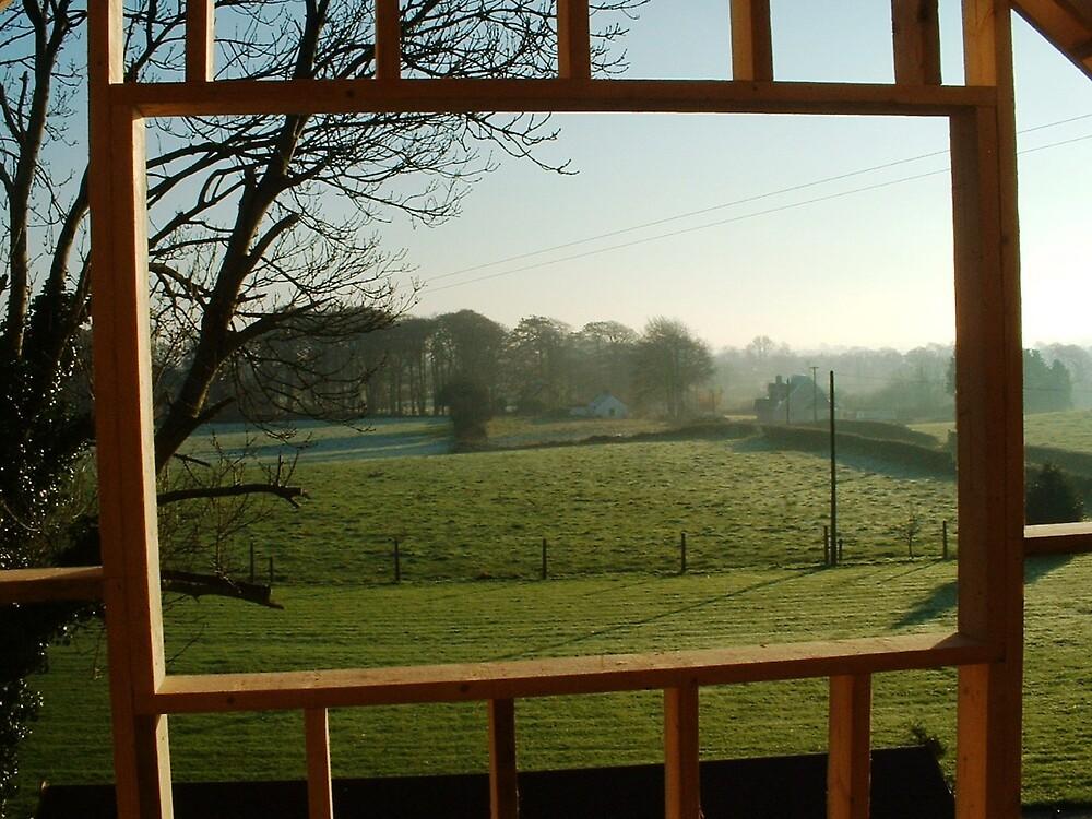Open Window by Patrick Ronan