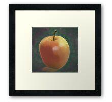 Gala Apple Framed Print