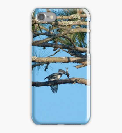 King Fisher with Dinner iPhone Case/Skin
