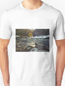 The Water at McConnell's Mill (Mid November 2014) T-Shirt