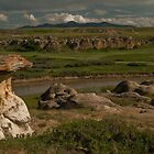 Milk River Stonescape by Coniferous