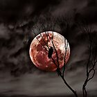 Red Moon Rising    by Steven  Sandner