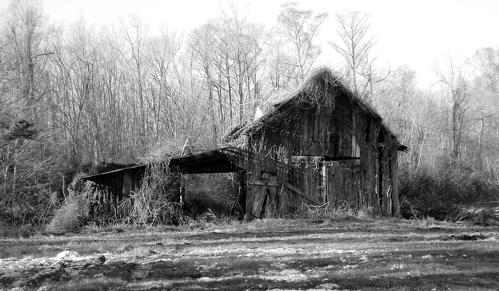 Winter Barn by badbeeb