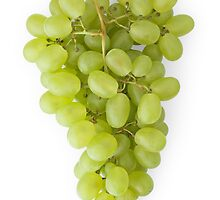 Bunch of Grapes as a Healthy and Nutritious Fruit by etienjones