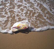 Australian beach life by yevett