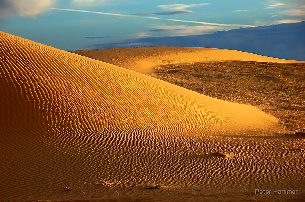 Perry Sand Dunes by Peter Hammer