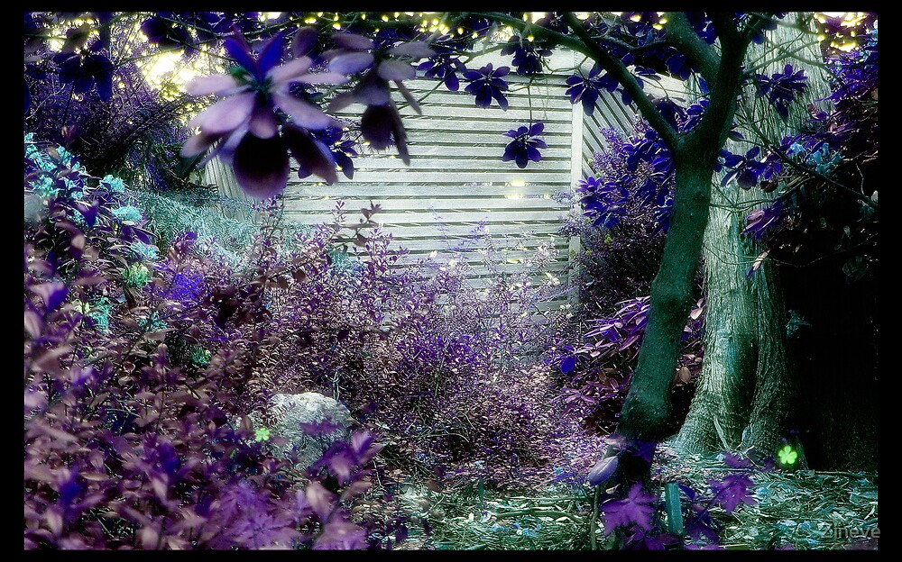 Purple Palace by Zineve