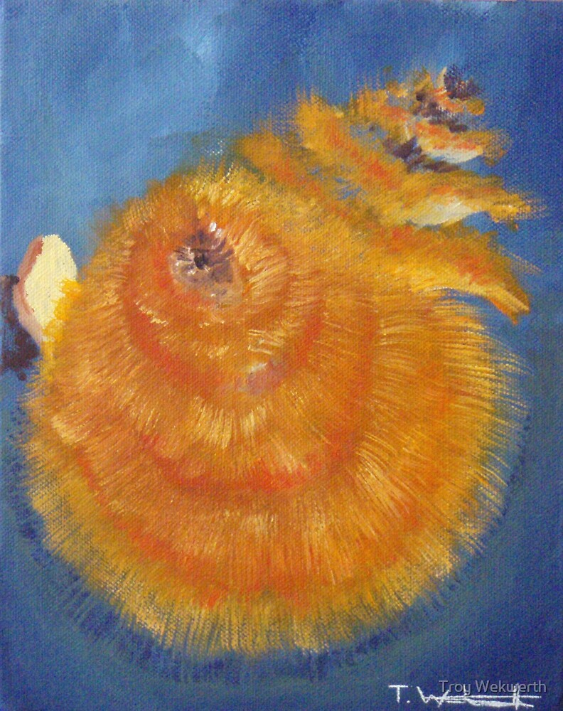 Christmas Tree Worm by Troy Wekwerth
