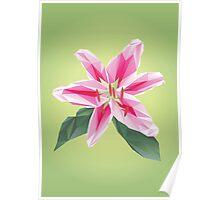 Polygonal Lily Poster