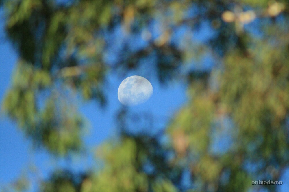 moon thru the gums 2 by bribiedamo