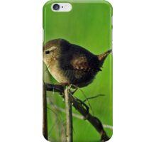 Wren iPhone Case/Skin