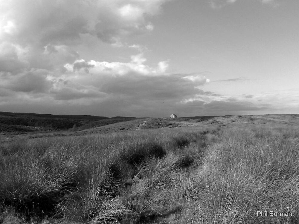 Monks Moor, Teesdale by Phil Burman