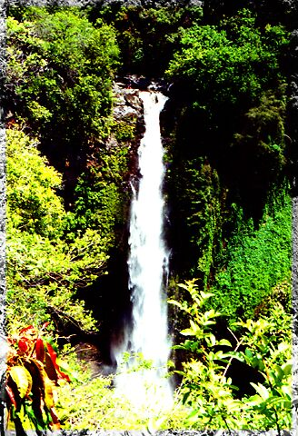 Maui Falls by xposepix