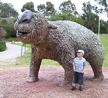 woah, that's a big wombat! by jackiewintle