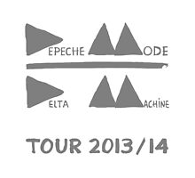 Depeche Mode : Tour 2013/14 - Depeche Mode - Grey by Luc Lambert