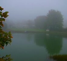 Fog Pond by mainelion