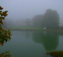 Fog Pond by mainelion