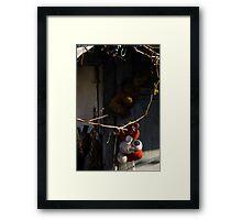Backyard Art Framed Print
