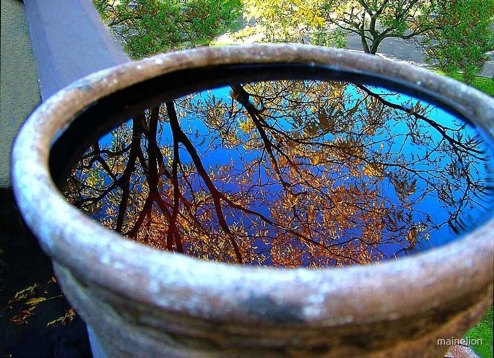 Autumn Bowl by mainelion