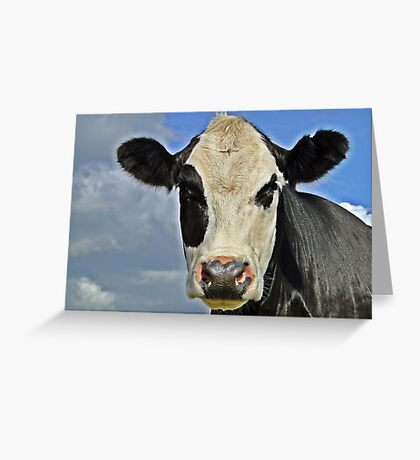 Only Have Eyes For Moo Greeting Card
