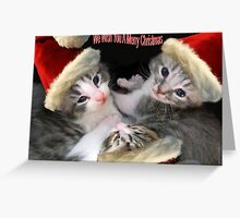 Christmas Kittens Greeting Card