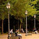 Shady Park by Warren. A. Williams